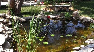 lanscaping garden pond
